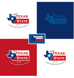 Texas map and flag vector