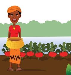 tomato garden vector image