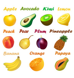 a set of fruits with names on a white background vector image vector image