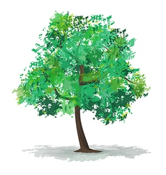 green abstract tree vector image vector image