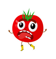 Tomatoes cartoon vector
