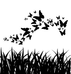 Silhouette of grass and flying butterflies vector