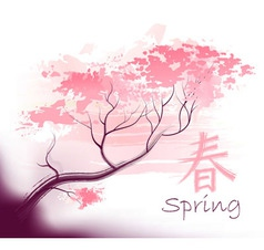 Beautiful sacura spring cherry vector image