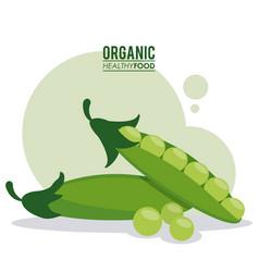 Organic healthy food peas pod green vector
