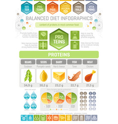 Proteins diet infographic diagram poster water vector