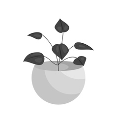 Vase with decorative leaves icon vector