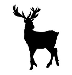 pictogram deer big antlers wildlife poster vector image