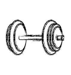 Dumbbells icon image vector