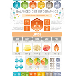 Fat lipids diet infographic diagram poster water vector