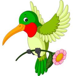 Cartoon funny hummingbird vector