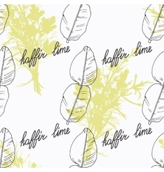 Hand drawn kaffir lime branch and handwritten sign vector