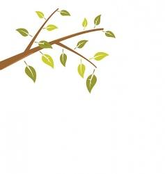 branch tree vector image