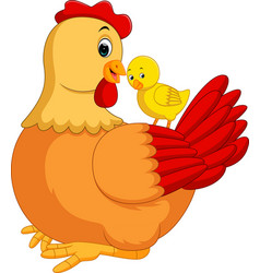 chicken hen cartoon vector image