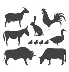 Farm Animal Silhouette vector image vector image
