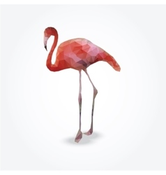 Modern polygon of flamingo vector image