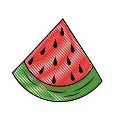 Watermelon fruit food vector