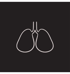 Lungs sketch icon vector