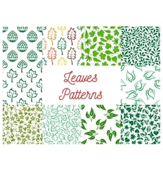 Leaves seamless pattern set for nature design vector