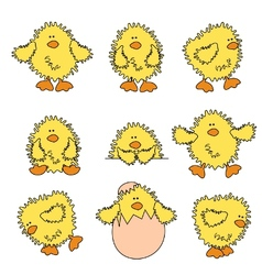 cute easter chick vector image vector image