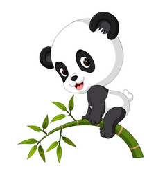 cute funny baby panda hanging on the bamboo vector image