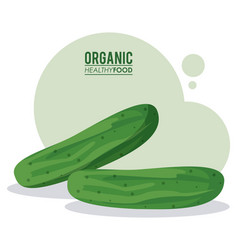 organic healthy food cucumber vegetable vector image