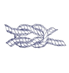 Sea knot rope hand draw sketch vector