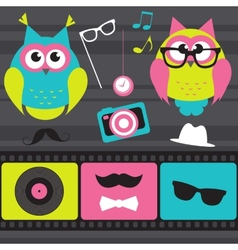 Set of retro elements and owls vector image