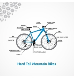 Hard tail mountain bikes vector