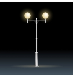 Street lamp isolated on white electricity vector image vector image