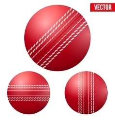 Traditional shiny red cricket ball vector