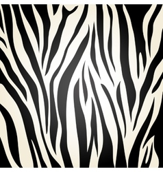Zebra icon Animal print background vector image
