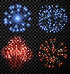Festive fireworks set vector