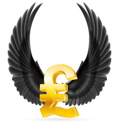 Flying pound vector image