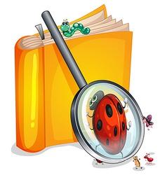 Book worm vector image