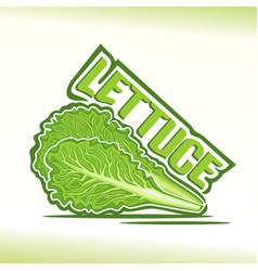Logo for lettuce vector