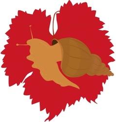 Snail on grape leaf vector