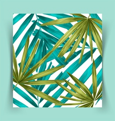 tropical leaf background vector image