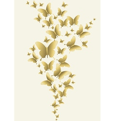 Gold butterfly spring time design vector image vector image