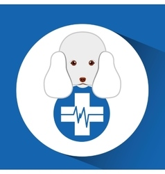 Digital pet shop with poodle and clinic symbol vector