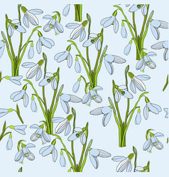 Seamless pattern first snowdrops vector