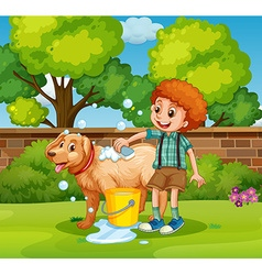 Boy giving dog bath in the park vector
