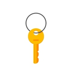 Key hanging on ring isolated vector image vector image