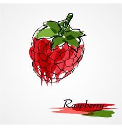 Raspberry fruit vector