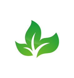 Tree leaf logo design vector image