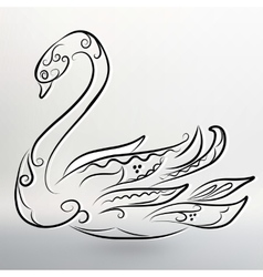 eps 10 of Abstract black swan vector image