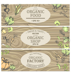organic shop with fresh tasty natural food posters vector image