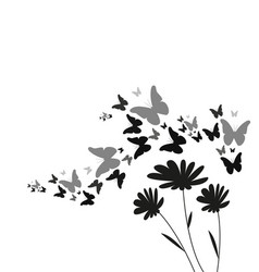 silhouette of flying butterflies and flowers vector image
