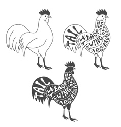 Butcher cuts scheme of chicken vector