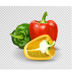 photo-realistic red paprika whole vector image