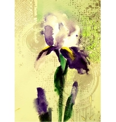 Beautiful violet iris flower vector